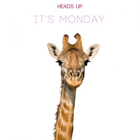 heads_upit's_monday.png NL