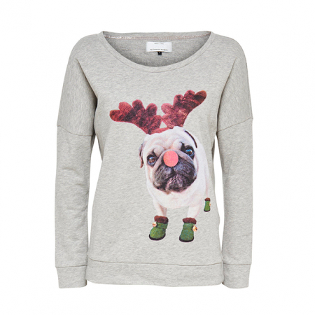 Sweater kerstpug