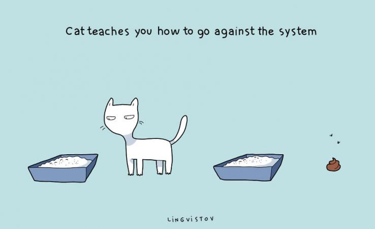 Le chat parle au rebelle qui sommeille en vous