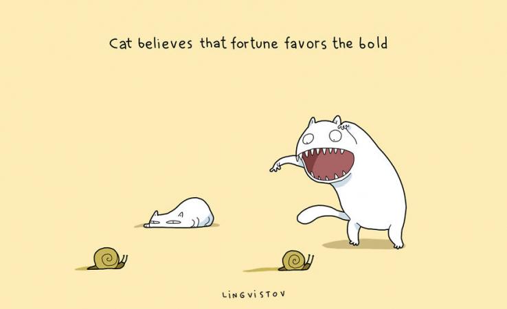 Le chat croit que la chance sourit aux audacieux