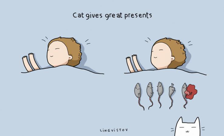 Le chat vous offre des cadeaux