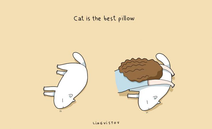 Le chat est le meilleur oreillé