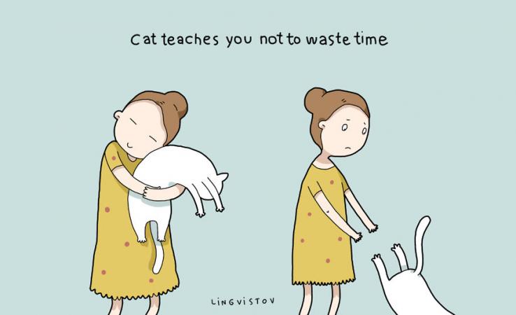 Le chat vous apprend à ne pas perdre de temps