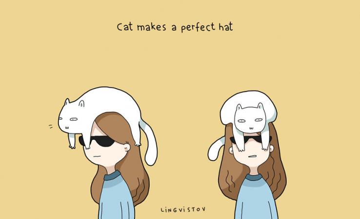 Le chat fait un exceptionnel chapeau
