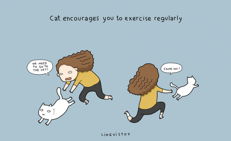 Le chat vous encourage à faire du sport