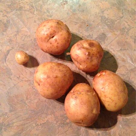 6 aardappelen