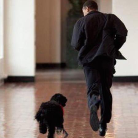 En train de jouer avec le chien de la famille, Bo