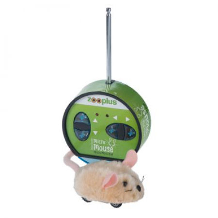 Petite souris électrique