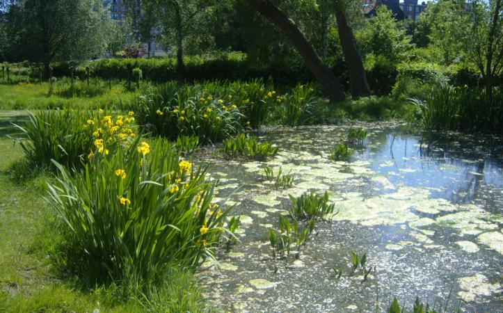 Parc du Scheutbos – Molenbeek-St-Jean