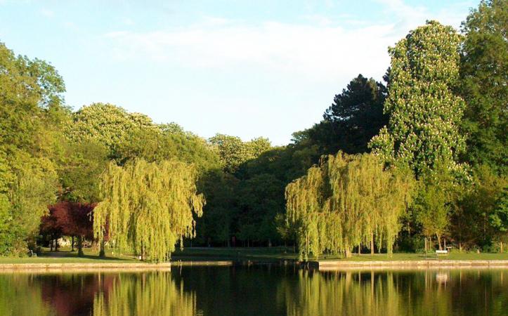 Vrijbroekpark – Malines