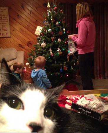 Toen alle ballen nog in de kerstboom hingen…