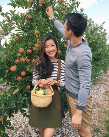 Aller à la cueillette des pommes