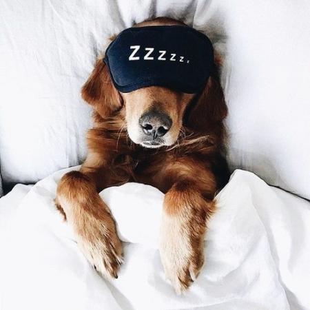 Doe een dutje