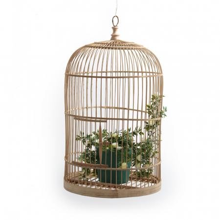 Grande cage à oiseaux (ou plantes) en bambou