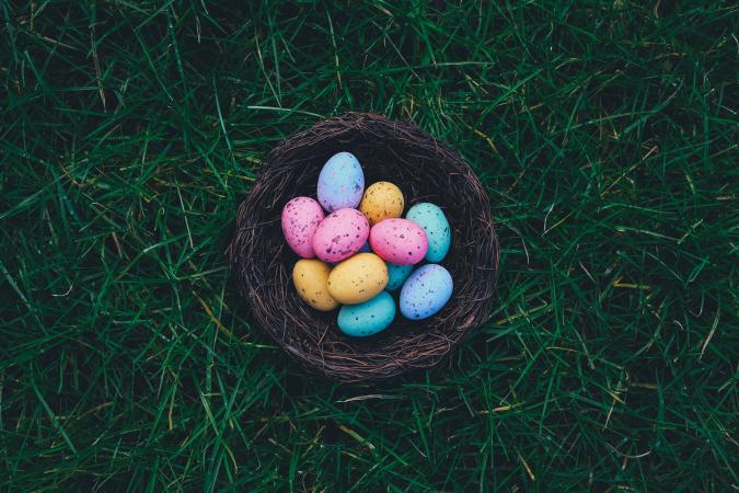 Participer à une chasse aux œufs