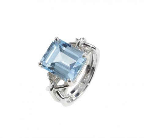 Kreeft: blue beauty