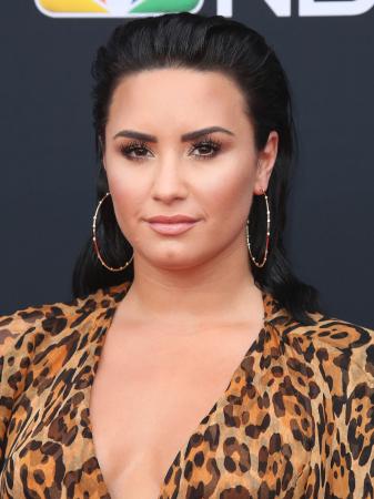 De wet look van Demi Lovato