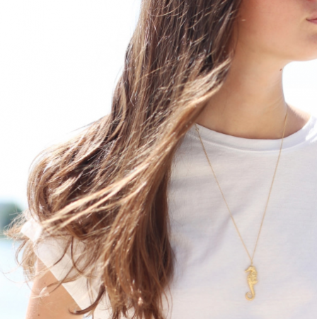 The Story of Planaxis Necklace