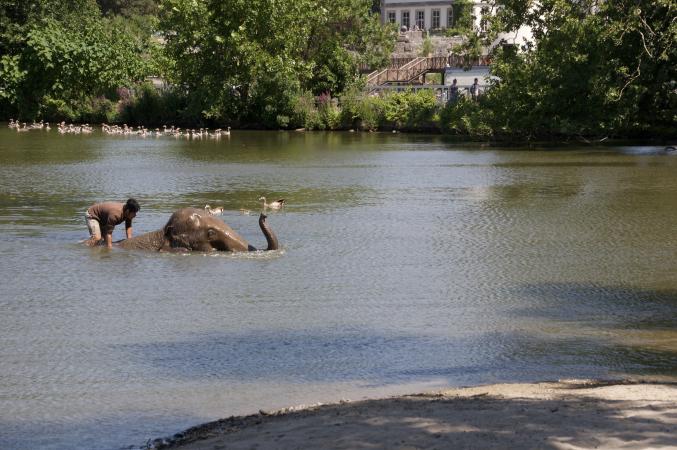 Bain de Mala dans le lac
