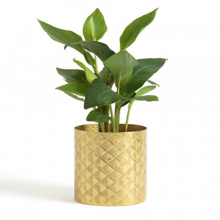 Cache-pot en laiton doré