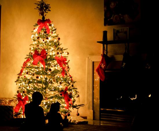 Acheter votre sapin de Noël – PARTOUT
