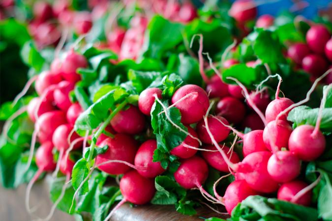 Les fanes de radis