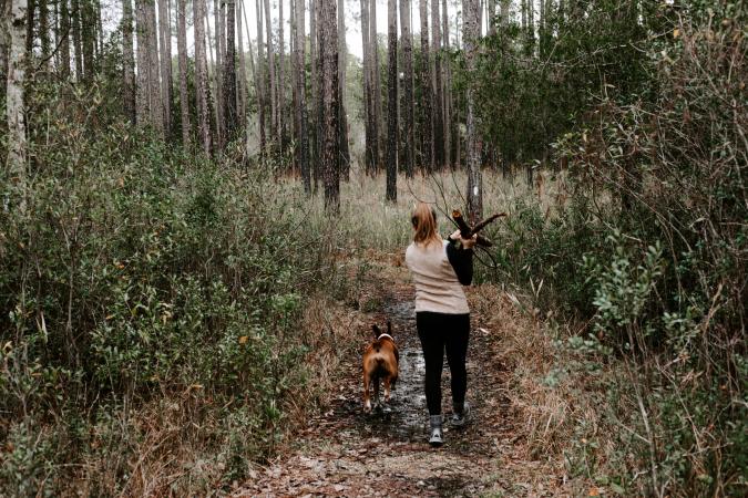 3) Agent des forêts