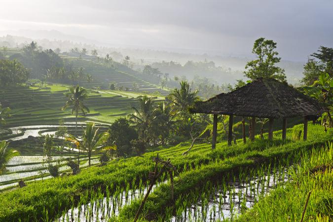 Ubud, Indonesië