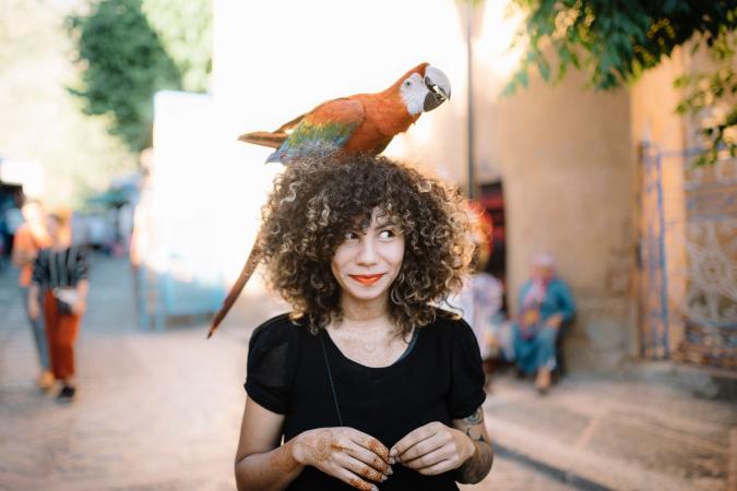 Tweelingen (22/05 – 21/06): een papegaai