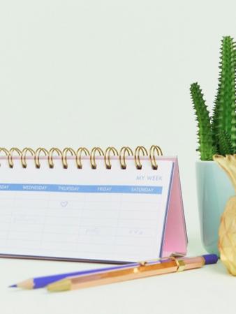 Pastelkleurige weekplanner met opschrift 'Oh My Days'