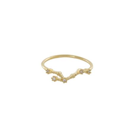 Ring met sterrenbeeld