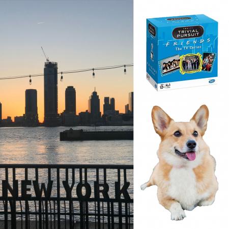 'Friends'-Trivial Pursuit, puppy en reis naar New York