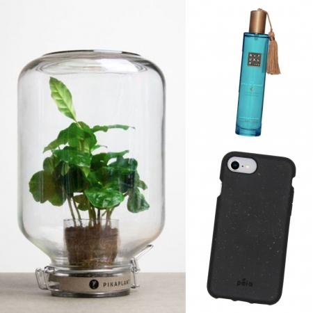 Pela-telefoonhoesje,terrarium,body mist