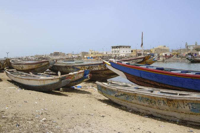 Vissen (20 februari t/m 20 maart) –Saint-Louis, Senegal