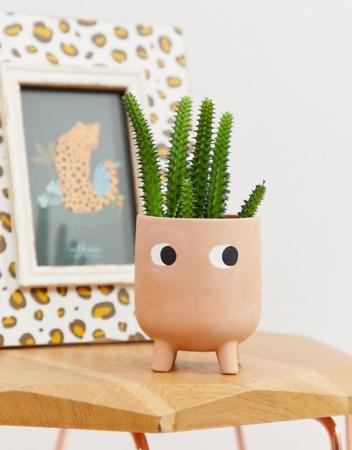Plantpotje uit terracotta
