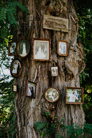 De familieboom