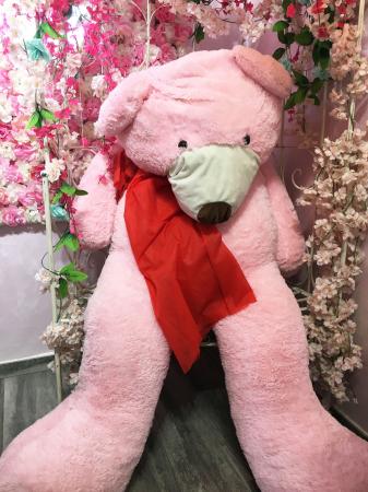 Twee gigantisch grote, roze teddyberen kenmerken de zaak.