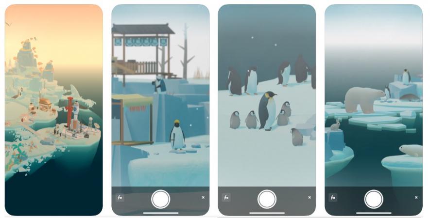 L'île aux pingouins