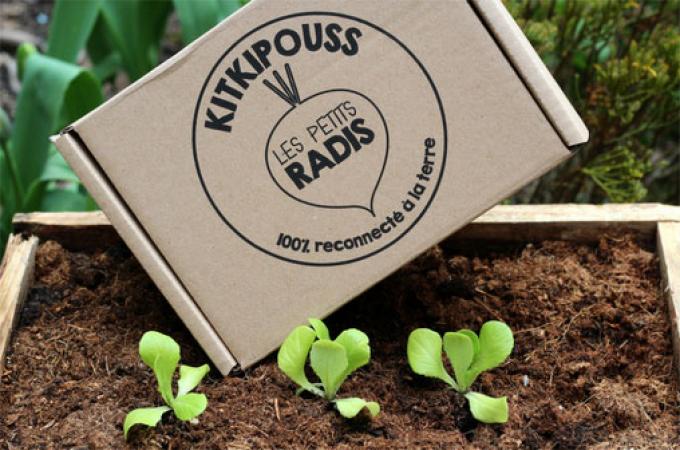 Pour les jardiniers en herbe – Les Petits Radis