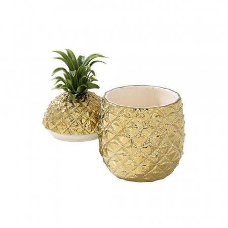 Gouden ananasijsemmer