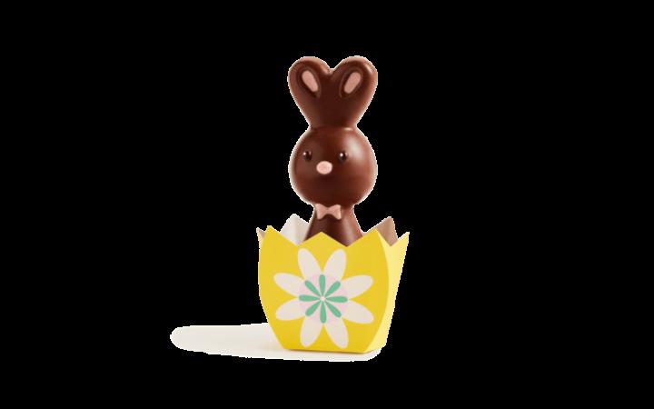 Petit Lapin au Chocolat au lait
