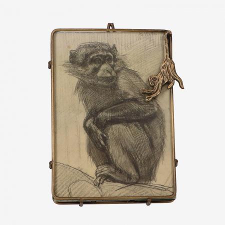 Fotolijst met aapje