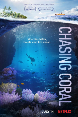 Chasing Coral – film documentaire – 2017