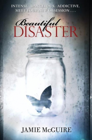 'Beautiful disaster' van Jamie McGuire