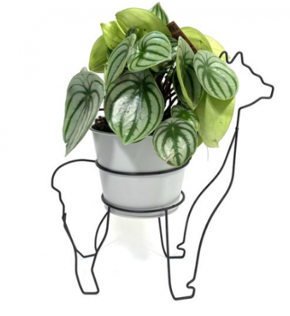 Alpaca plantenhouder