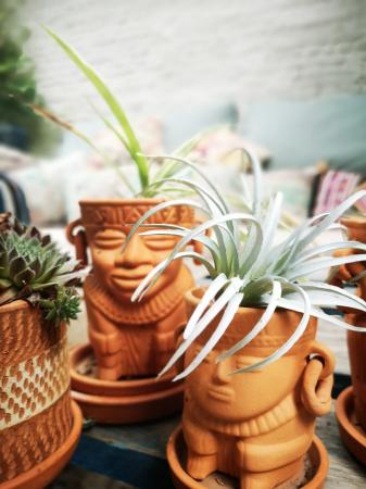 Terracotta bloempotjes