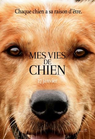 "DVD ""Mes vies de chien"""
