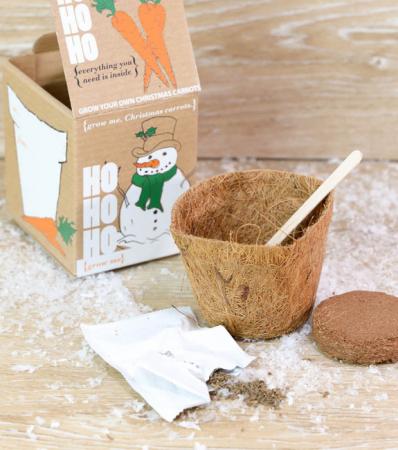 Un kit à faire pousser une carotte