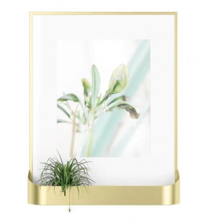 Cadre photo avec petit bord pour plante