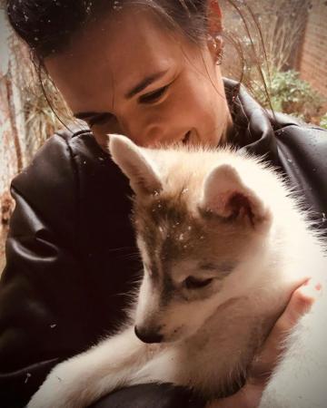 Redactrice Elien (32) + husky Yuki (3 maanden)
